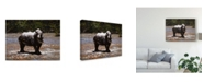 "Trademark Global Pip Mcgarry White Rhino Canvas Art - 20"" x 25"""