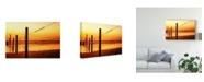 "Trademark Global Pixie Pics Orange Coast Fence Canvas Art - 37"" x 49"""