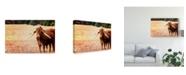 "Trademark Global Pixie Pics African Longhorn Cattle Canvas Art - 15"" x 20"""