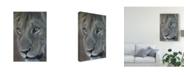 "Trademark Global Pip Mcgarry Lion King 2012 Canvas Art - 20"" x 25"""