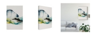 """Trademark Global Sisa Jasper Abstract Terrain III Canvas Art - 37"""" x 49"""""""
