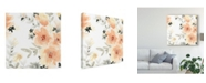 "Trademark Global June Erica Vess Blush Garden II Canvas Art - 27"" x 33"""