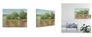 "Trademark Global Ethan Harper Muddy River II Canvas Art - 20"" x 25"""