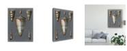 "Trademark Global Pierre Redoute Midnight Shells II Canvas Art - 20"" x 25"""