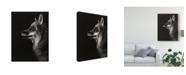 "Trademark Global Julie T. Chapman Black Glimpse V Canvas Art - 37"" x 49"""