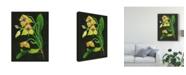 "Trademark Global Melissa Wang Telipogon Caulescens I Canvas Art - 37"" x 49"""