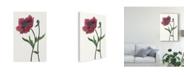 "Trademark Global Melissa Wang Poppy Flower II Canvas Art - 20"" x 25"""