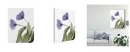 """Trademark Global Judy Stalus Xray Tulip III Canvas Art - 20"""" x 25"""""""