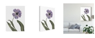 "Trademark Global Judy Stalus Xray Tulip X Canvas Art - 20"" x 25"""