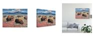 "Trademark Global Jack Sorenson Home on the Range Canvas Art - 15"" x 20"""
