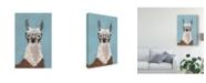 """Trademark Global Victoria Borges Llama Specs I Canvas Art - 15"""" x 20"""""""