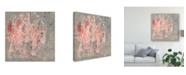 "Trademark Global Jennifer Goldberger Blush Kinesis II Canvas Art - 20"" x 25"""