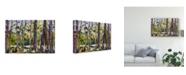 "Trademark Global Erin Mcgee Ferrell Brushy Tree Line II Canvas Art - 15"" x 20"""