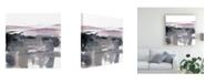 "Trademark Global Jennifer Goldberger Blush Plane I Canvas Art - 20"" x 25"""