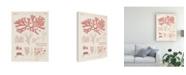 "Trademark Global Vision Studio Antique Coral Seaweed III Canvas Art - 15"" x 20"""