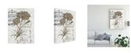 "Trademark Global Melissa Wang Ua Ch Petite Beaute III Canvas Art - 20"" x 25"""