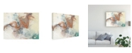 "Trademark Global Jennifer Goldberger Copper Canyon I Canvas Art - 20"" x 25"""