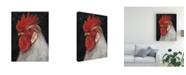 "Trademark Global Ethan Harper Rooster Portrait II Canvas Art - 20"" x 25"""