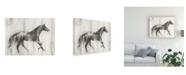 "Trademark Global Ethan Harper Appaloosa Study I Canvas Art - 15"" x 20"""