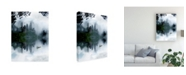 "Trademark Global Tatiana Gorilovsky Chinese Dreamworld Canvas Art - 20"" x 25"""