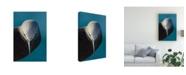 """Trademark Global Mathilde Guillemot I Bow Canvas Art - 20"""" x 25"""""""