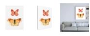 """Trademark Global Shirley Novak Watercolor Butterflies IV Canvas Art - 27"""" x 33.5"""""""