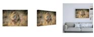 """Trademark Global Jeffrey C. Sink Blondie Canvas Art - 19.5"""" x 26"""""""