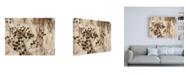"""Trademark Global Design Fabrikken Secret 3 Fabrikken Canvas Art - 19.5"""" x 26"""""""