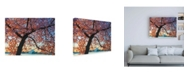 "Trademark Global Mitch Catanzaro Morning Blossom Canvas Art - 19.5"" x 26"""