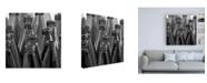 """Trademark Global Roderick Stevens Black & White Ring Toss Canvas Art - 15.5"""" x 21"""""""