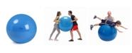 Gymnic Physio Exercise Ball 95