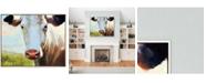 "Paragon American Girl Framed Wall Art, 34"" x 42"""