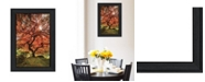 """Trendy Decor 4U First Colors of Fall II by Moises Levy, Ready to hang Framed Print, Black Frame, 15"""" x 21"""""""