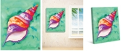 "Creative Gallery Colorful Sea Snail Shell 36"" x 24"" Canvas Wall Art Print"