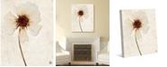 "Creative Gallery Dried Peach Rosa Blanda on Paper-pattern 36"" x 24"" Canvas Wall Art Print"