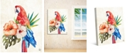 """Creative Gallery Watercolor Tropical Macaw on Tan 20"""" x 16"""" Canvas Wall Art Print"""