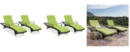 Noble House Baja Outdoor Chaise Lounge (Set Of 2)