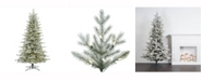 Vickerman 7.5' Frosted Eastern Frasier Fir Artificial Christmas Tree with 700 Warm White LED Lights