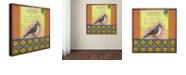 """Trademark Global Rachel Paxton 'Small Bird 234' Canvas Art, 18"""" x 18"""""""