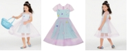 Rare Editions Little Girls Pleated Two-Tone Mesh Dress