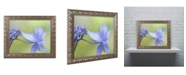 "Trademark Global Cora Niele 'Blue Hydrangea' Ornate Framed Art - 20"" x 16"" x 0.5"""