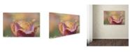 "Trademark Global Cora Niele 'Tulip Crispa' Canvas Art - 24"" x 16"" x 2"""