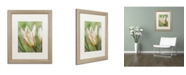 "Trademark Global Cora Niele 'Tulip Primulina' Matted Framed Art - 20"" x 16"" x 0.5"""
