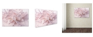 "Trademark Global Cora Niele 'Pink Peony Petals II' Canvas Art - 19"" x 12"" x 2"""