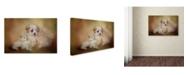 """Trademark Global Jai Johnson 'Best Friends' Canvas Art - 19"""" x 12"""" x 2"""""""