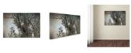 "Trademark Global Jai Johnson 'Last Winter Blast Bald Eagle' Canvas Art - 19"" x 12"" x 2"""