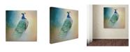 "Trademark Global Jai Johnson 'Peacock 4' Canvas Art - 18"" x 18"" x 2"""