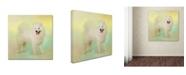 "Trademark Global Jai Johnson 'Samoyed In Spring' Canvas Art - 35"" x 35"" x 2"""