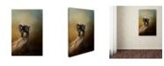 """Trademark Global Jai Johnson 'Little Rock Climber' Canvas Art - 32"""" x 22"""" x 2"""""""