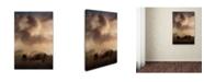 "Trademark Global Jai Johnson 'Bison Grazing At Sunrise' Canvas Art - 47"" x 30"" x 2"""